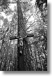 black and white, czech republic, europe, jesus, sumava forest, trees, vertical, photograph