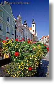 czech republic, europe, flowers, telc, vertical, photograph