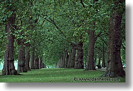 cities, england, english, europe, horizontal, hyde, hyde park, london, park, trees, united kingdom, photograph