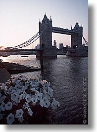 bridge, cities, england, english, europe, london, sunsets, tower bridge, towers, united kingdom, vertical, photograph