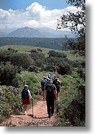 cauria, corsica, europe, france, hike, vertical, photograph