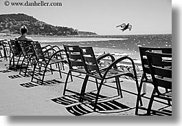 birds, black and white, chairs, europe, france, horizontal, nice, ocean, seas, photograph
