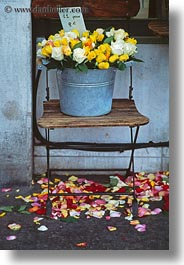 europe, flowers, france, paris, pots, roses, silver, vertical, photograph
