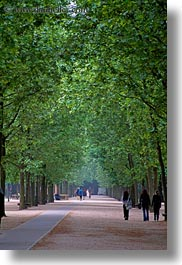 europe, flowers, france, paris, trees, tuilleries, tunnel, vertical, walk, photograph