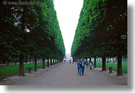 couples, europe, flowers, france, horizontal, paris, people, trees, tuilleries, tunnel, walk, photograph