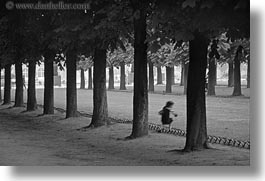 black and white, europe, flowers, france, horizontal, motion blur, paris, trees, tuilleries, tunnel, walk, photograph