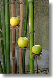 abstracts, aix en provence, apples, arts, bamboo, colors, europe, france, green, provence, vertical, photograph