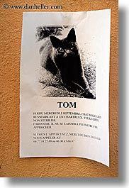 aix en provence, cats, europe, france, lost, provence, signs, tom, vertical, photograph