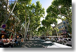 aix en provence, cours mirabeau, europe, france, horizontal, nature, plants, provence, streets, tree tunnel, trees, photograph