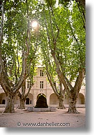 avignon, europe, france, provence, vertical, photograph