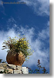 bargeme, blues, clouds, colors, europe, flowers, france, nature, provence, sky, vertical, yellow, photograph
