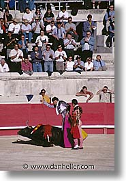 bullfight, europe, france, provence, vertical, photograph