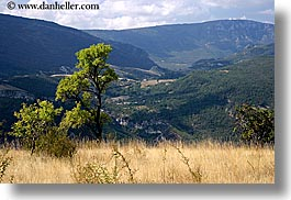 castellane, europe, france, horizontal, mountains, nature, plants, provence, scenics, trees, valley, photograph