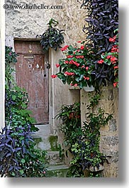 alleys, europe, fayence, flowers, france, provence, vertical, photograph