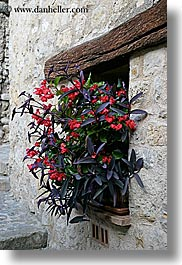 europe, fayence, flowers, france, provence, vertical, windows, photograph