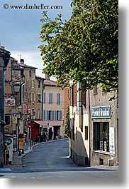 branches, europe, fayence, france, nature, plants, provence, towns, trees, vertical, photograph