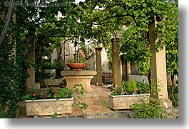 colors, europe, flowers, france, green, horizontal, hotel des messugues, ivy, nature, plants, potted, provence, trees, photograph