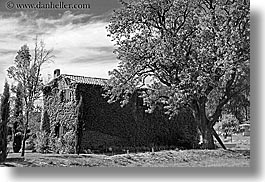 black and white, covered, europe, france, horizontal, houses, ivy, moustiers, provence, scenics, st marie, trees, photograph