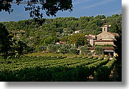 colors, europe, france, green, horizontal, monestaries, provence, scenics, vineyards, photograph