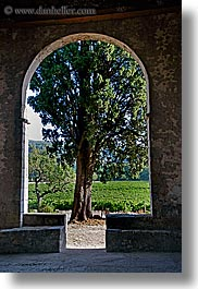 archways, colors, europe, france, green, nature, plants, provence, seillans, structures, trees, vertical, photograph