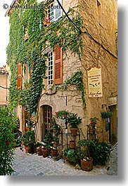 buildings, colors, covered, europe, france, green, ivy, nature, plants, potted, provence, seillans, vertical, photograph