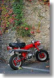colors, europe, france, ivy, leaves, materials, motorcycles, nature, plants, provence, red, seillans, stones, vertical, photograph