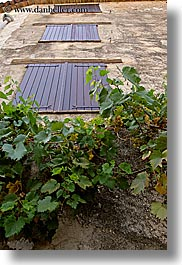 europe, france, ivy, materials, nature, plants, provence, shutters, st paul, stones, vertical, windows, photograph
