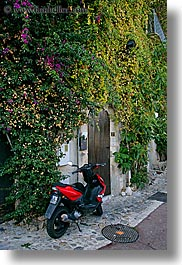 bougainvilleas, cobblestones, colors, europe, flowers, france, green, ivy, materials, motorcycles, nature, plants, provence, red, st paul, vertical, photograph