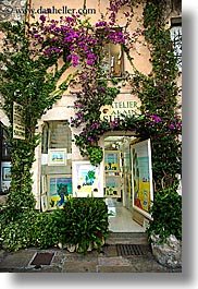 bougainvilleas, europe, flowers, france, nature, provence, st paul, stores, vertical, photograph