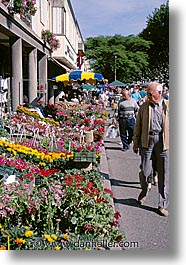 europe, flowers, france, market, provence, tarascon, vertical, photograph