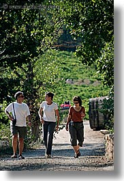 activities, clothes, europe, france, groups, hiking, jennifer marano, men, nature, people, plants, provence, sunglasses, tree tunnel, trees, vertical, walking, womens, photograph
