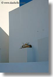 abstracts, amorgos, arts, europe, greece, ledge, stuff, vertical, photograph