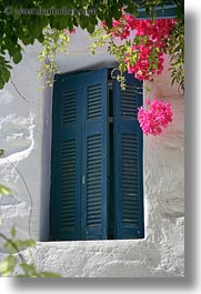 amorgos, blues, bougainvilleas, doors & windows, europe, flowers, greece, nature, shutters, vertical, white wash, photograph