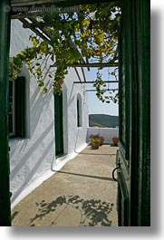 amorgos, covered, doors, doors & windows, europe, greece, green, open, patio, vertical, vines, white wash, photograph