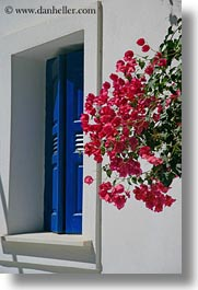 amorgos, blues, bougainvilleas, europe, flowers, greece, nature, vertical, windows, photograph