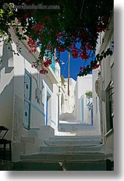 amorgos, bougainvilleas, europe, greece, stairs, vertical, white wash, photograph