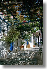 amorgos, canopy, europe, flowers, greece, shadows, stairs, vertical, photograph