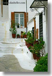 athens, europe, greece, plants, stairs, vertical, white wash, windows, photograph