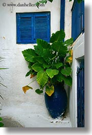 athens, blues, europe, greece, green, plants, pots, vertical, windows, photograph