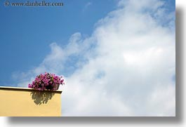 athens, clouds, cloudy, europe, flowers, greece, horizontal, nature, pink, sky, photograph