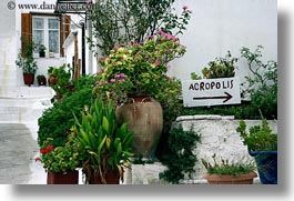 acropolis, athens, europe, greece, horizontal, plants, signs, photograph
