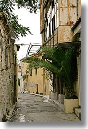 athens, europe, greece, narrow, palm trees, streets, vertical, photograph