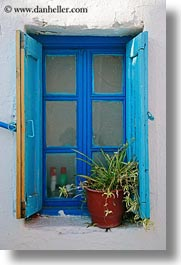 blues, europe, greece, mykonos, plants, spider, vertical, windows, photograph