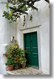 doors, doors & windows, europe, flowers, greece, green, nature, naxos, plants, vertical, photograph