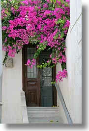 bougainvilleas, doors, doors & windows, europe, flowers, greece, nature, naxos, pink, stairs, vertical, photograph