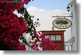 bougainvilleas, europe, flowers, greece, horizontal, nature, naxos, red, signs, photograph