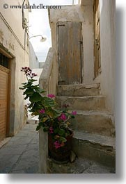 europe, geraniums, greece, naxos, pink, stairs, vertical, photograph
