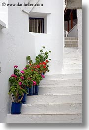europe, flowers, greece, nature, naxos, potted, stairs, vertical, white wash, photograph