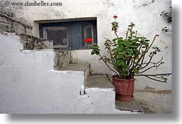 europe, flowers, geraniums, greece, horizontal, red, stairs, tinos, white wash, photograph