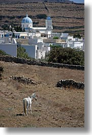 blues, churches, domed, europe, greece, horses, scenics, tinos, vertical, white, photograph